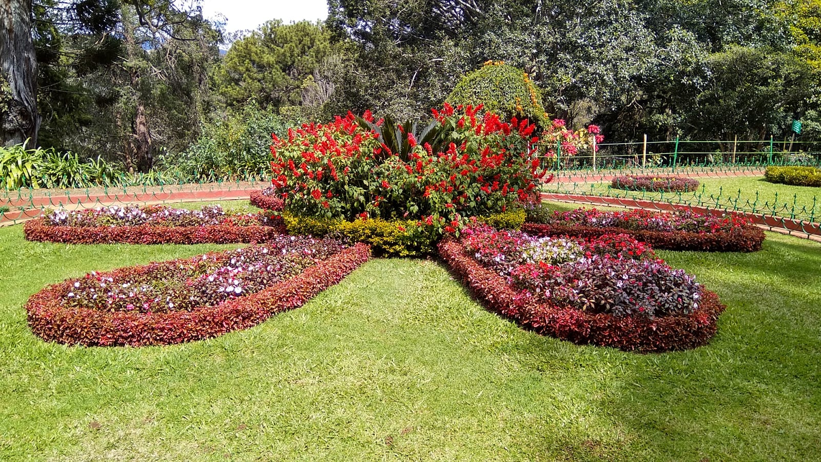 travelogged-18-things-do-ooty-botanical-garden_image