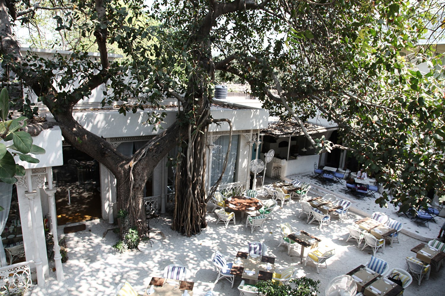most-romantic-restaurants-delhi-ncr-Olive_Qutub