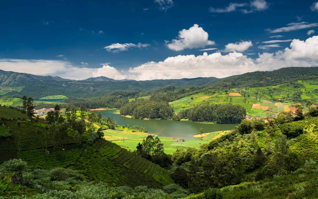 Ooty-images