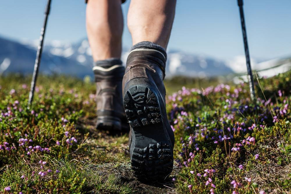 hiking shoes trail_image