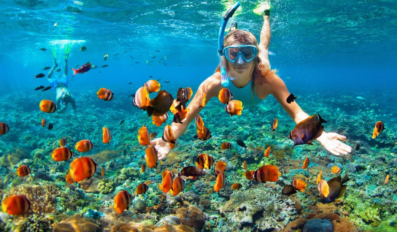 best-thrilling-activities-india-snorkeling-andaman-nicobar-islands_image