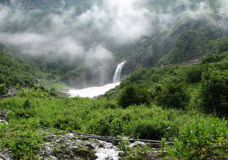 silent valley national park in kerala_image